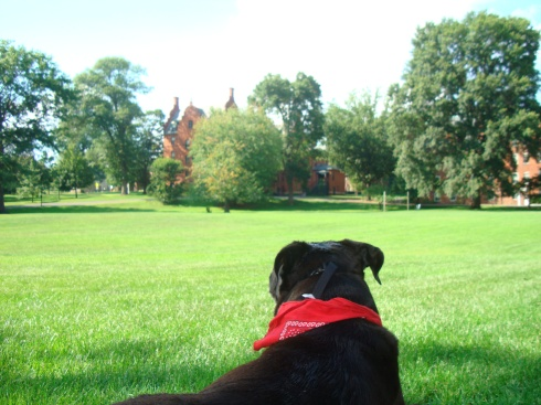 Relaxing on Blanchard Green